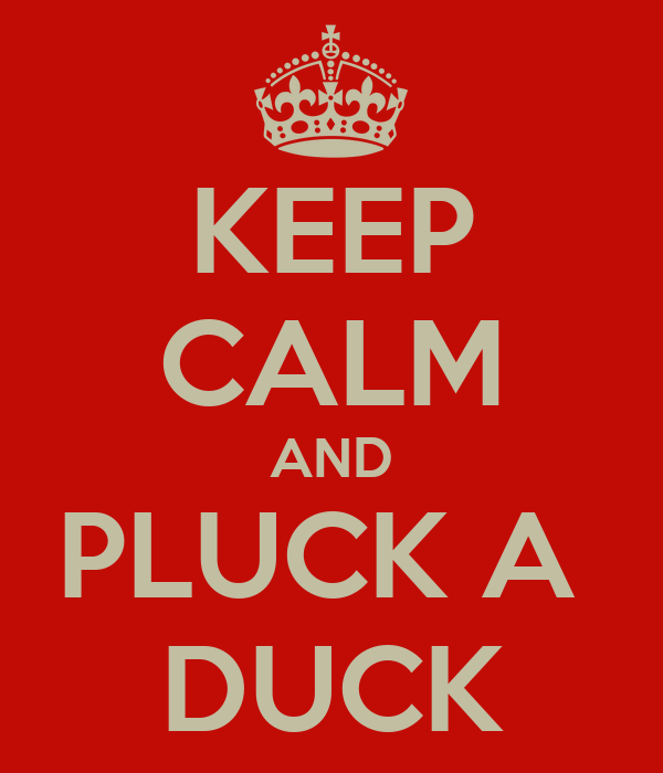 KEEP CALM AND PLUCK A  DUCK