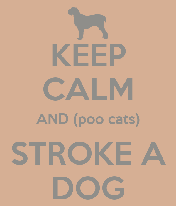 KEEP CALM AND (poo cats) STROKE A DOG