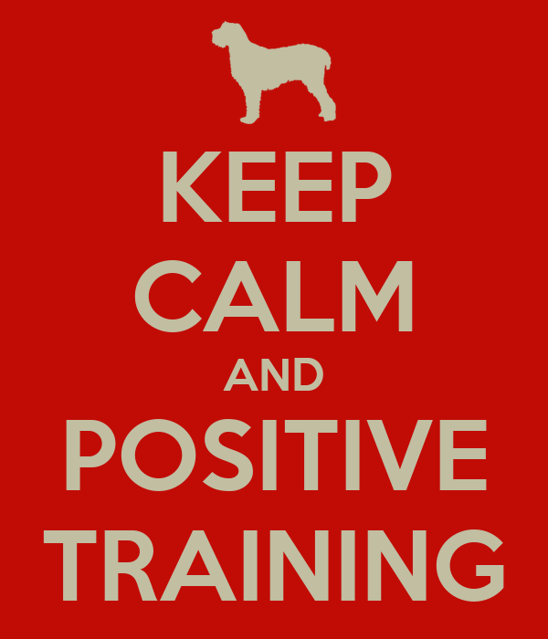 KEEP CALM AND POSITIVE TRAINING