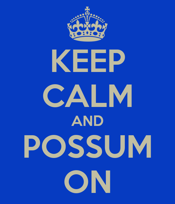 KEEP CALM AND POSSUM ON