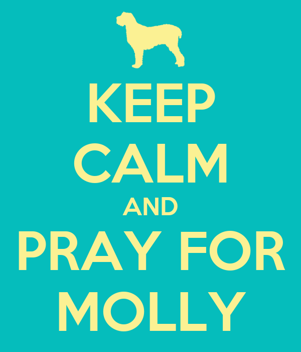 KEEP CALM AND PRAY FOR MOLLY