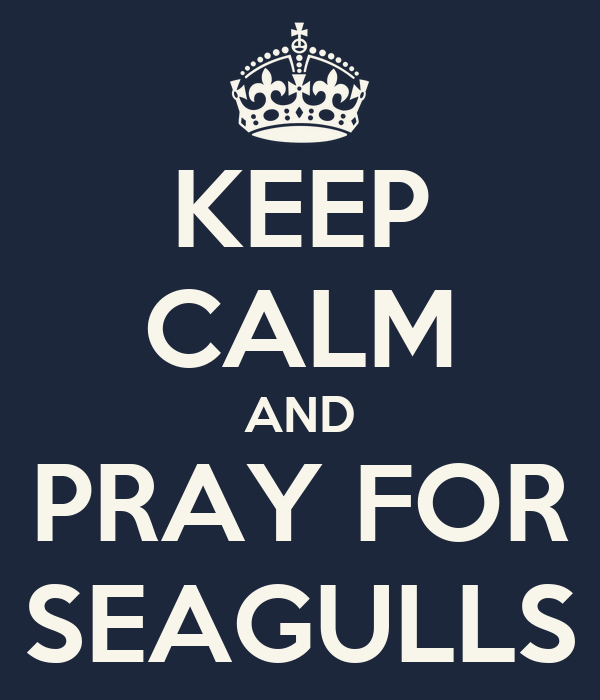 KEEP CALM AND PRAY FOR SEAGULLS