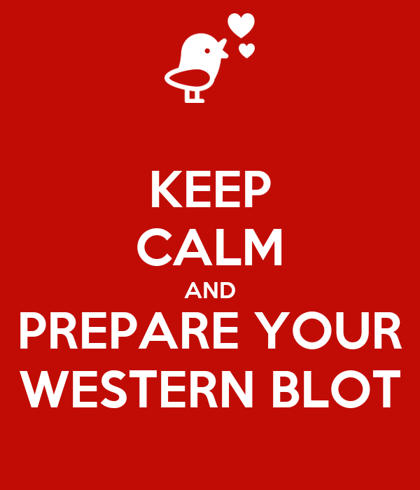 KEEP CALM AND PREPARE YOUR WESTERN BLOT