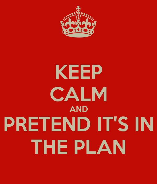 KEEP CALM AND PRETEND IT'S IN THE PLAN