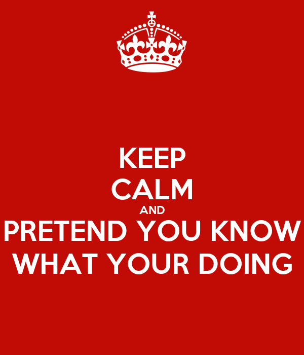 KEEP CALM AND PRETEND YOU KNOW WHAT YOUR DOING