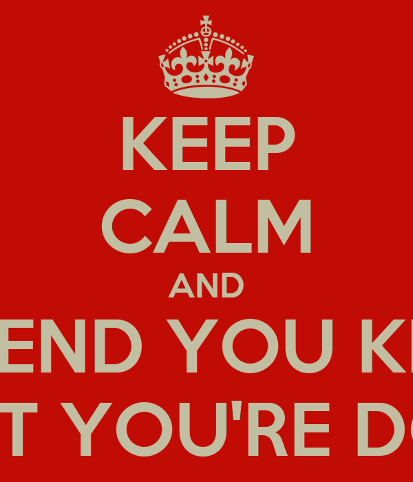 KEEP CALM AND PRETEND YOU KNOW WHAT YOU'RE DOING
