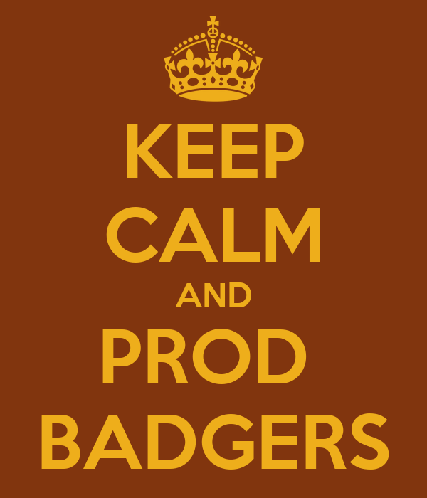 KEEP CALM AND PROD  BADGERS