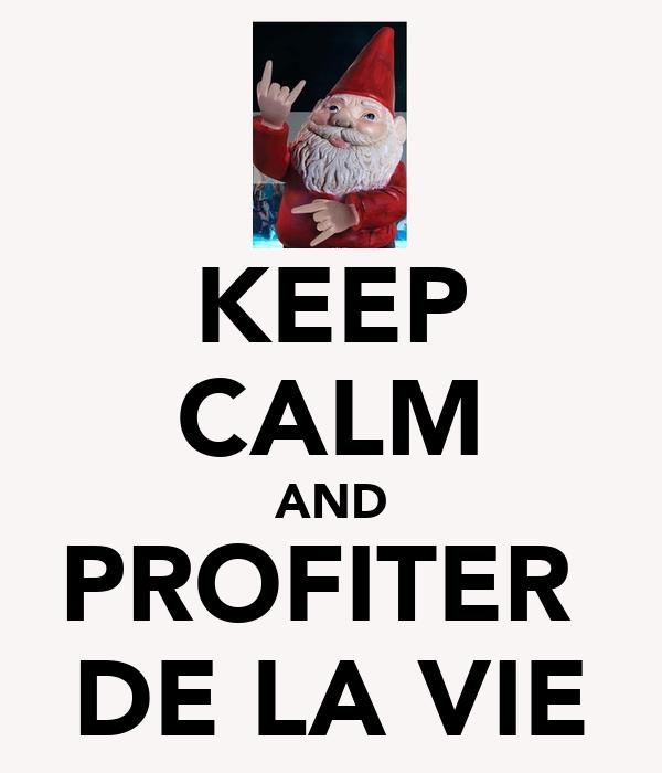 KEEP CALM AND PROFITER  DE LA VIE
