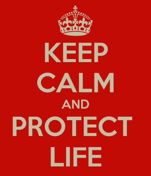 KEEP CALM AND PROTECT  LIFE