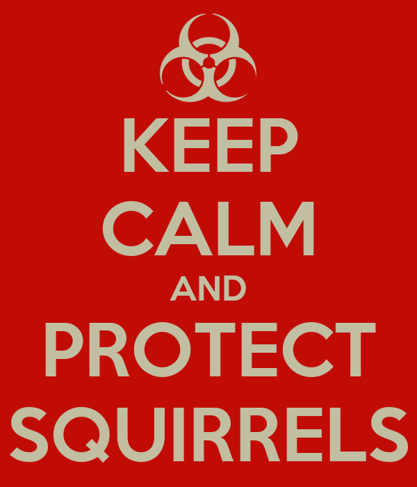 KEEP CALM AND PROTECT SQUIRRELS