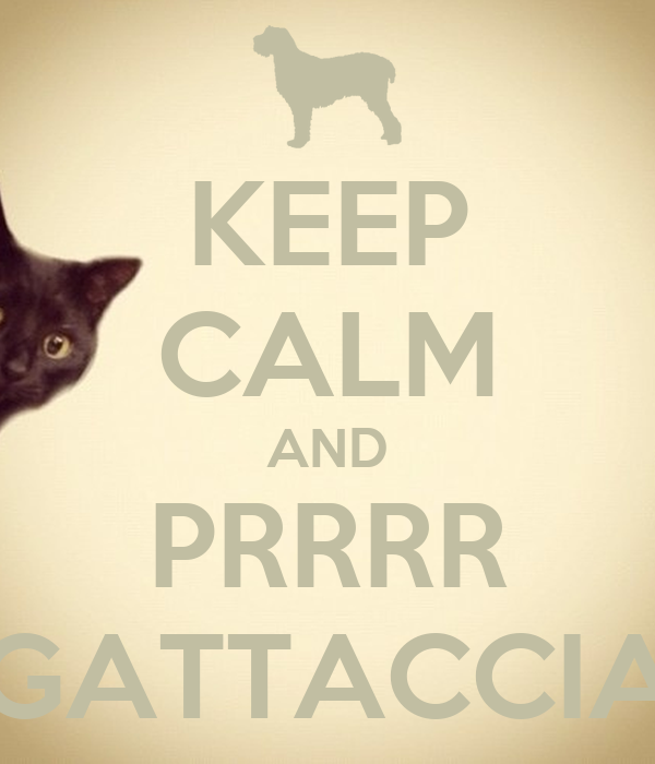 KEEP CALM AND PRRRR GATTACCIA