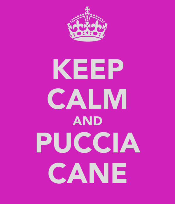KEEP CALM AND PUCCIA CANE