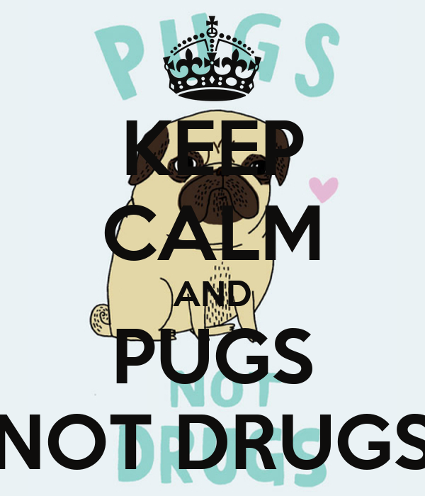 KEEP CALM AND PUGS NOT DRUGS