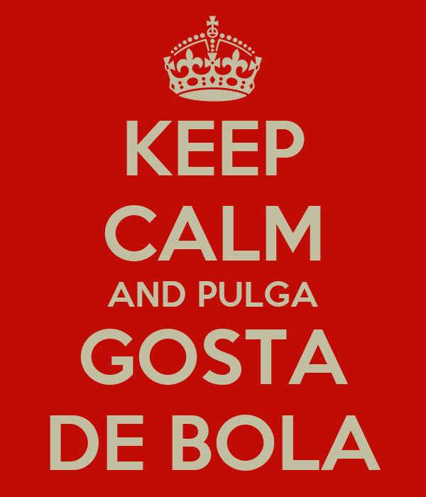 KEEP CALM AND PULGA GOSTA DE BOLA