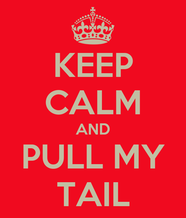 KEEP CALM AND PULL MY TAIL