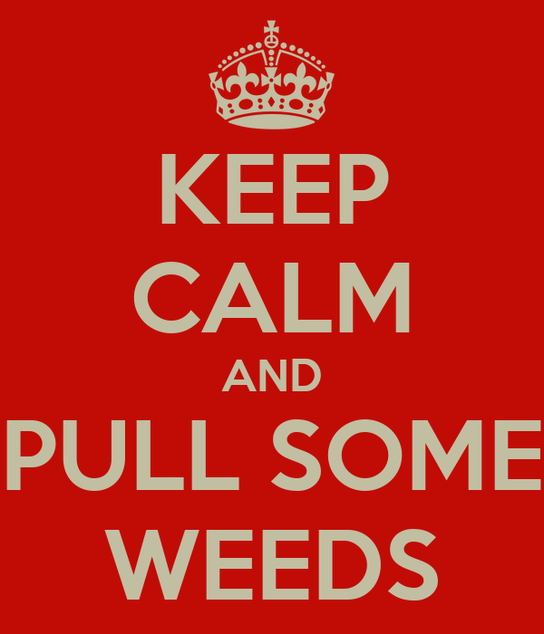 KEEP CALM AND PULL SOME WEEDS