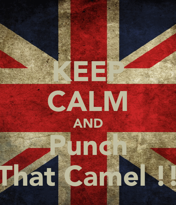 KEEP CALM AND Punch That Camel !!