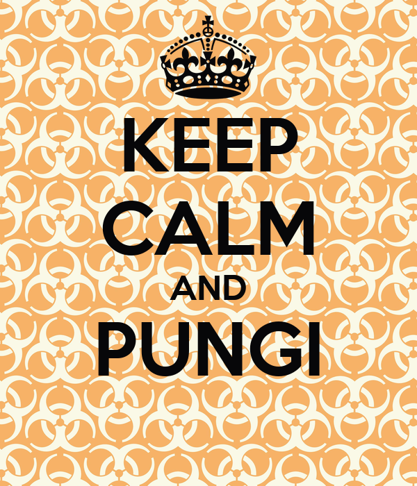 KEEP CALM AND PUNGI