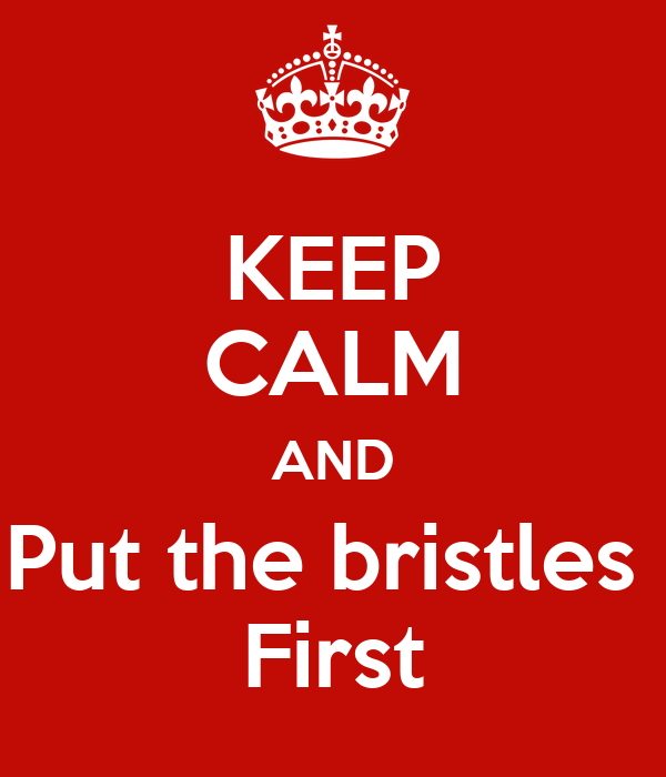 KEEP CALM AND Put the bristles  First