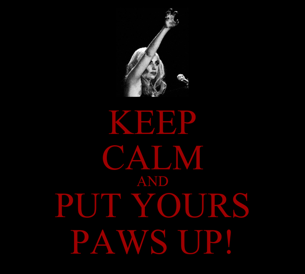 KEEP CALM AND PUT YOURS PAWS UP!