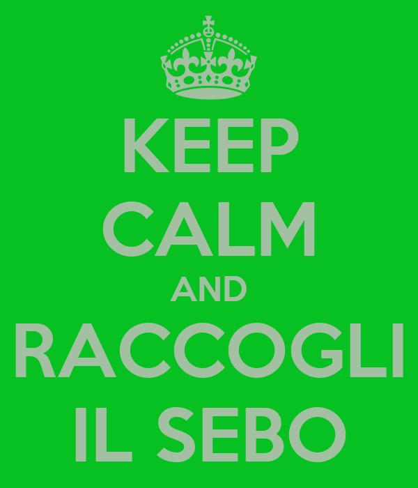 KEEP CALM AND RACCOGLI IL SEBO