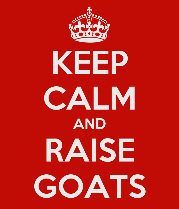 KEEP CALM AND RAISE GOATS