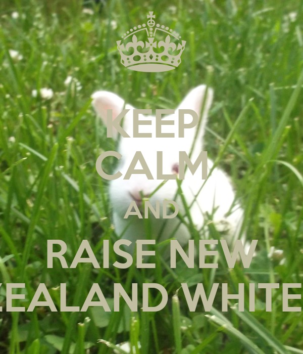 KEEP CALM AND RAISE NEW ZEALAND WHITES