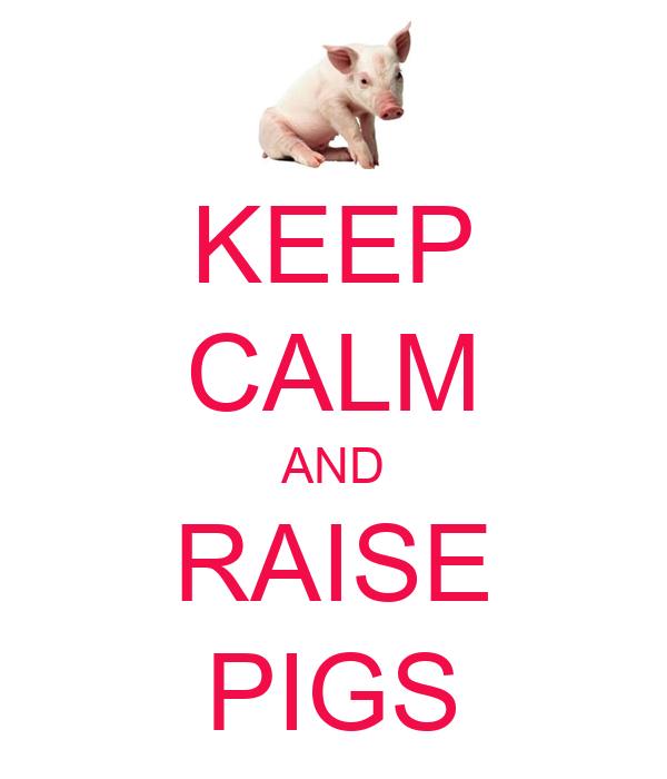KEEP CALM AND RAISE PIGS
