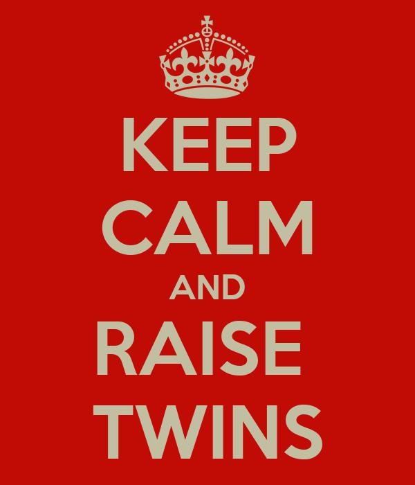 KEEP CALM AND RAISE  TWINS