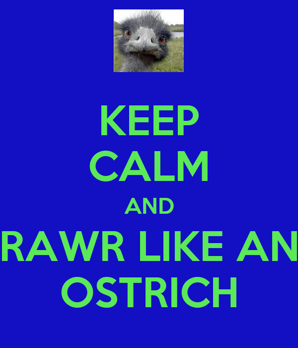 KEEP CALM AND RAWR LIKE AN OSTRICH