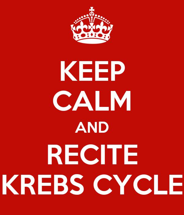 KEEP CALM AND RECITE KREBS CYCLE