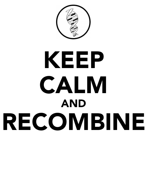 KEEP CALM AND RECOMBINE