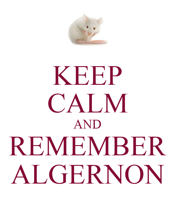KEEP CALM AND REMEMBER ALGERNON