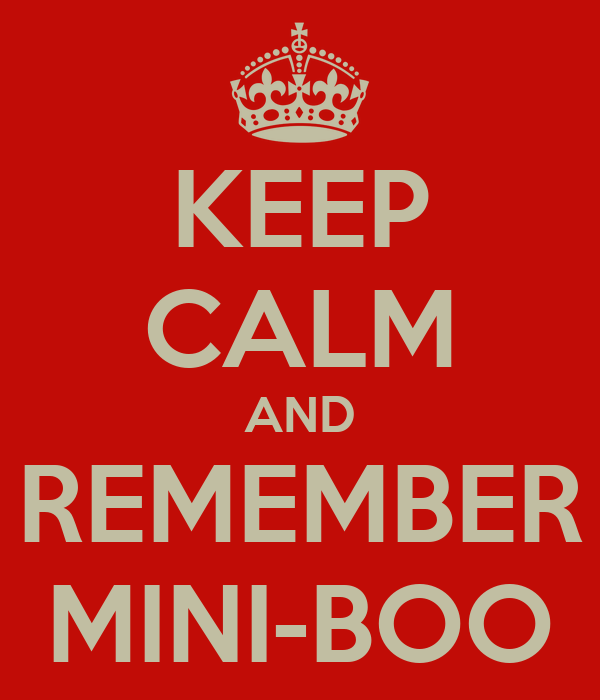 KEEP CALM AND REMEMBER MINI-BOO