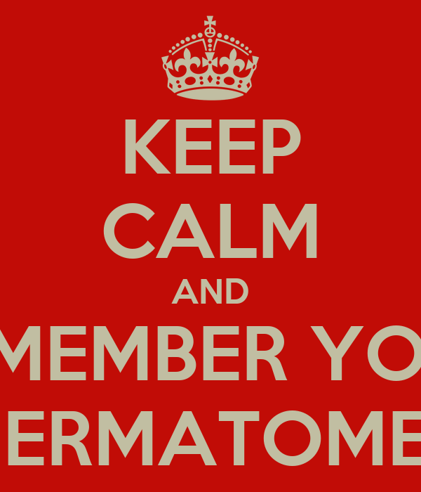 KEEP CALM AND REMEMBER YOUR DERMATOMES