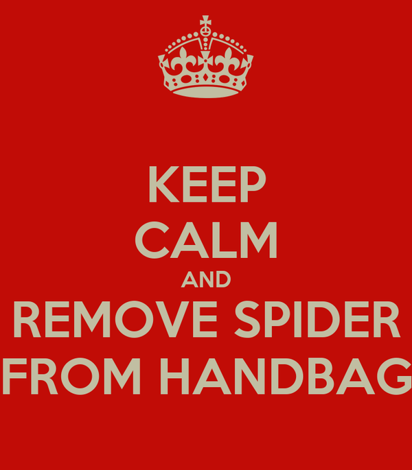KEEP CALM AND REMOVE SPIDER FROM HANDBAG
