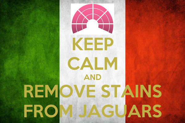 KEEP CALM AND REMOVE STAINS FROM JAGUARS