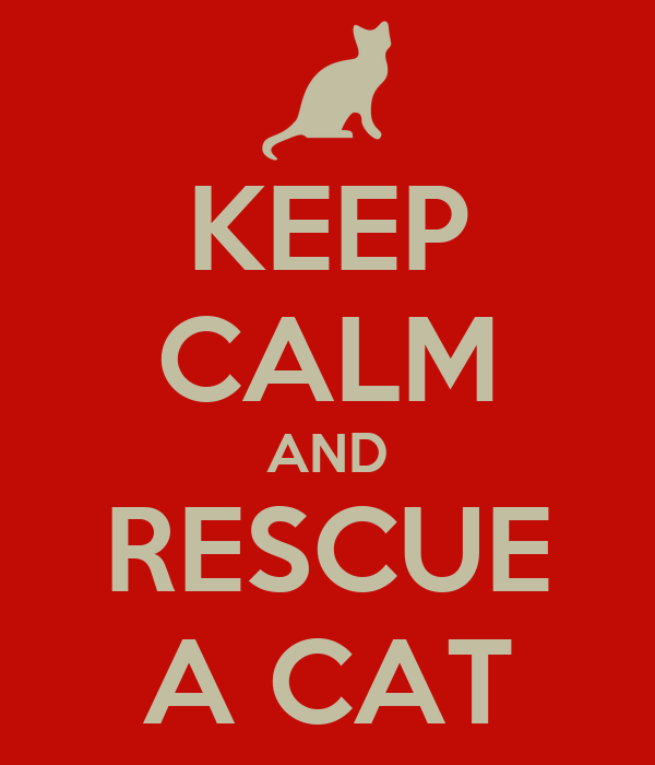 KEEP CALM AND RESCUE A CAT