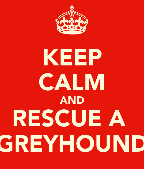KEEP CALM AND RESCUE A  GREYHOUND