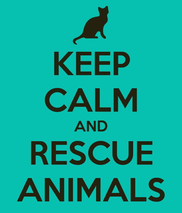 KEEP CALM AND RESCUE ANIMALS
