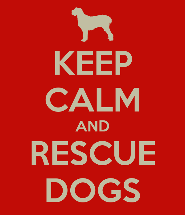 KEEP CALM AND RESCUE DOGS