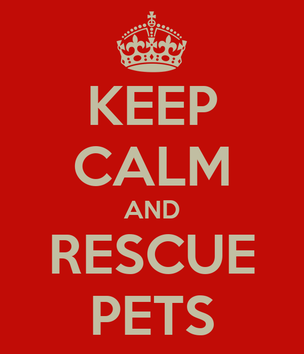 KEEP CALM AND RESCUE PETS