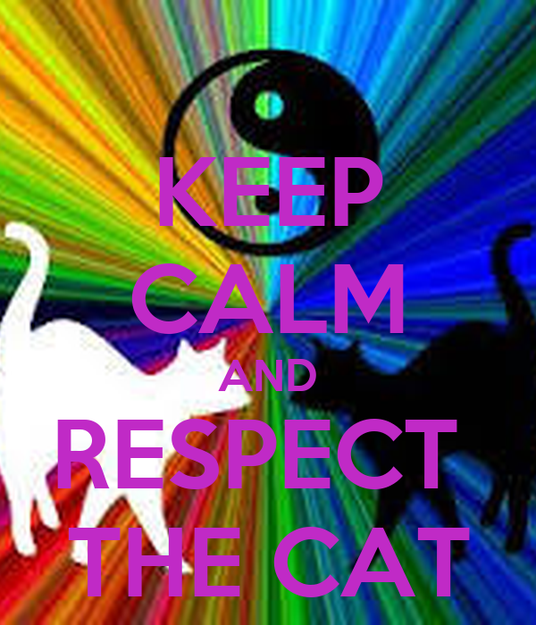 KEEP CALM AND RESPECT  THE CAT