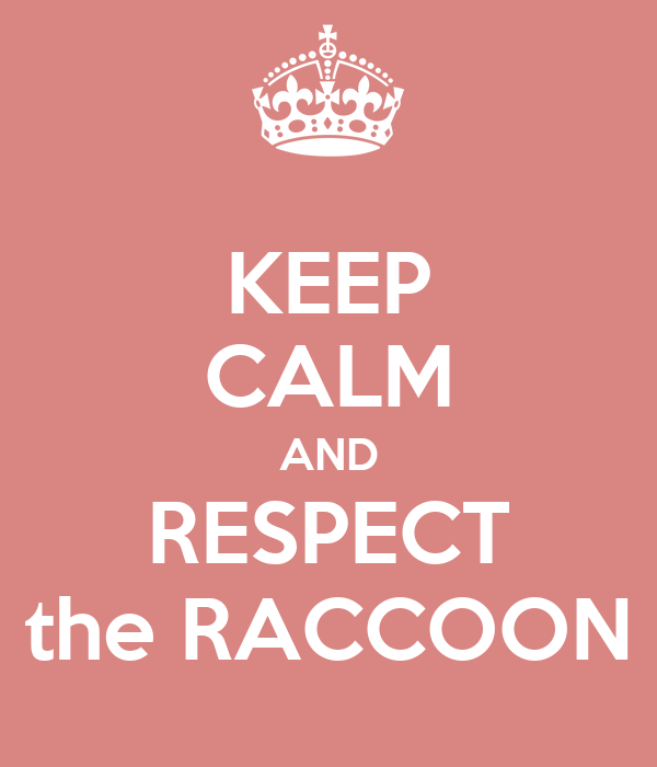 KEEP CALM AND RESPECT the RACCOON