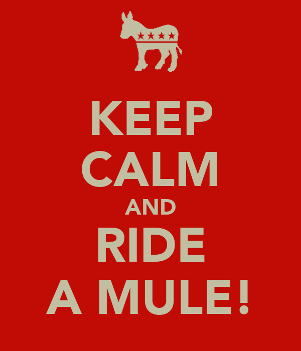 KEEP CALM AND RIDE A MULE!