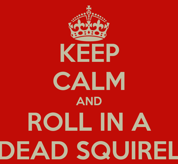 KEEP CALM AND ROLL IN A DEAD SQUIREL