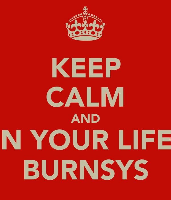 KEEP CALM AND RUIN YOUR LIFE AT BURNSYS
