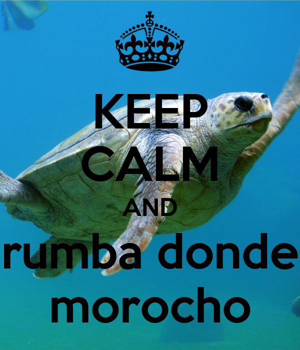 KEEP CALM AND rumba donde morocho