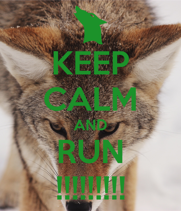 KEEP CALM AND RUN !!!!!!!!!