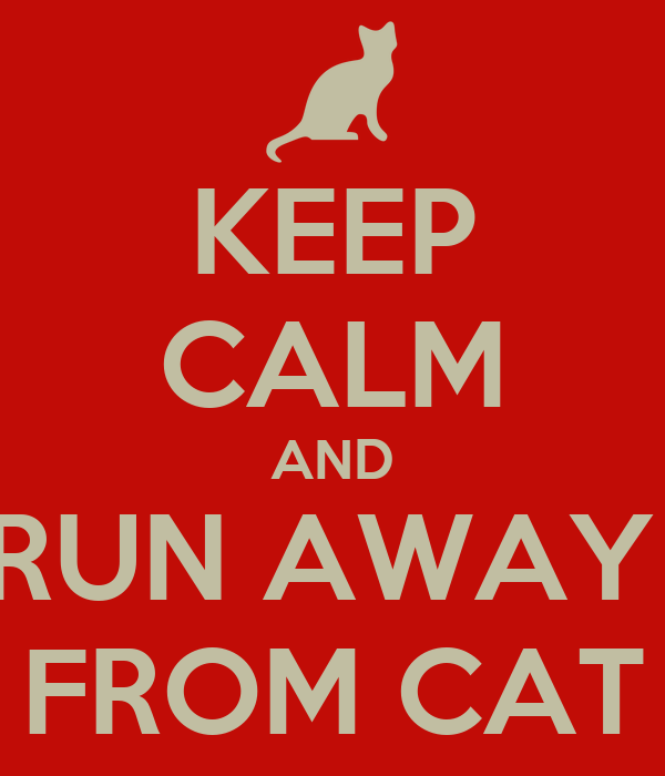 KEEP CALM AND RUN AWAY  FROM CAT